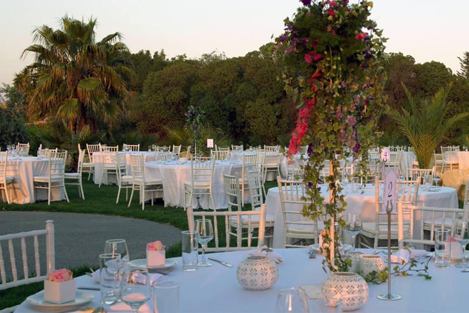 Getting married in cyprus helping you plan your wedding in cyprus elaiokipoi catering junglespirit Choice Image